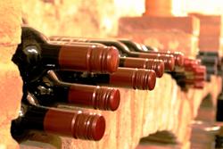 Wein selber machen Abfüllung